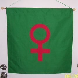 Planetary Banner (large) – Venus